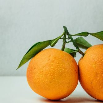 orange marmalade granada perspectives